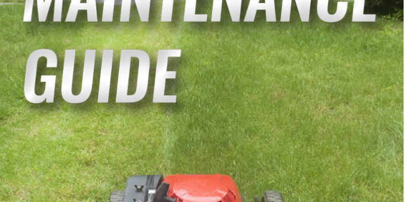 SUMMER LAWN MAINTENANCE GUIDE